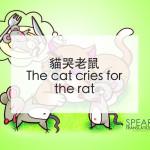 貓哭老鼠 - The cat cries for the rat