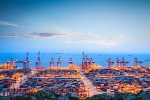 Hong Kong Role